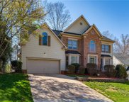 8016  Painted Pony Court, Charlotte image