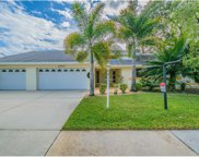 13713 Chestersall Drive, Tampa image