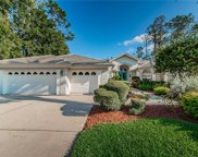 1304 Preservation Way, Oldsmar image