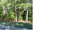 3028 Lake Pointe  Drive Unit #172, Belmont image