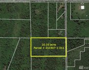 11500 Claussen Rd, Anderson Island image