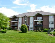 13128 Timber Trail Unit 204, Palos Heights image
