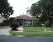 1318 Misty Ridge Court, Apopka image