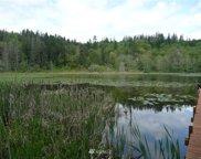 Rice Lake Road, Quilcene image
