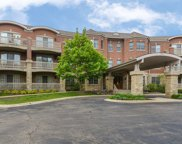 950 Augusta Way Unit 115, Highland Park image