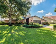 14702 Triple Eagle CT, Fort Myers image