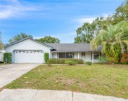 4210 Beau James Court, Winter Park image
