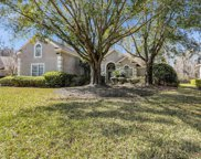 10076 VINEYARD LAKE RD E, Jacksonville image