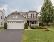 1238 Bellows Way, Volo image