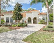 2744 Deer Track Way, Palm Harbor image