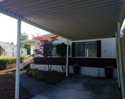 169 American Flag Way, Sonoma image