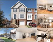 20904 BUTTERWOOD FALLS TERRACE, Sterling image