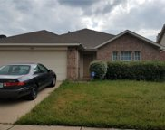 11012 Fawn Valley, Fort Worth image