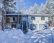 7565 Native Dancer Trail, Evergreen image