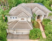 17230 Emerald Chase Drive, Tampa image