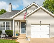 10909 Pineview Ct, Louisville image