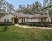 3602 SHINNECOCK LN, Green Cove Springs image
