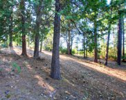 15075  Grand Knoll Drive, Meadow Vista image