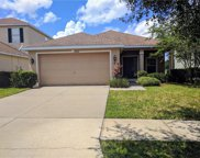 20614 Great Laurel Avenue, Tampa image