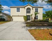 12901 Brookcrest Place, Riverview image