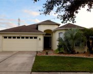8103 Water Tower Drive, Tampa image