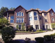 9286 Falling Waters E Drive, Burr Ridge image