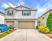 4958 White Sanderling Ct, Tampa image