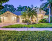 1579 Eagles Reach Drive, Tarpon Springs image