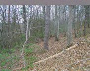 Lot 89  Chinquapin Road, Lake Lure image