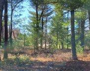 330 Pine Meadow Ct, Lake Delton image
