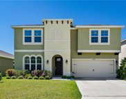 16480 Centipede Street, Clermont image