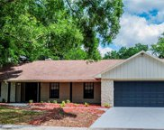 706 Thistle Drive, Seffner image