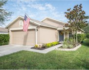 11224 Summer Star Drive, Riverview image