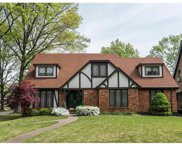 3899 Holly Hills, St Louis image