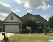 121 Waterford Highlands Trl, Calera image