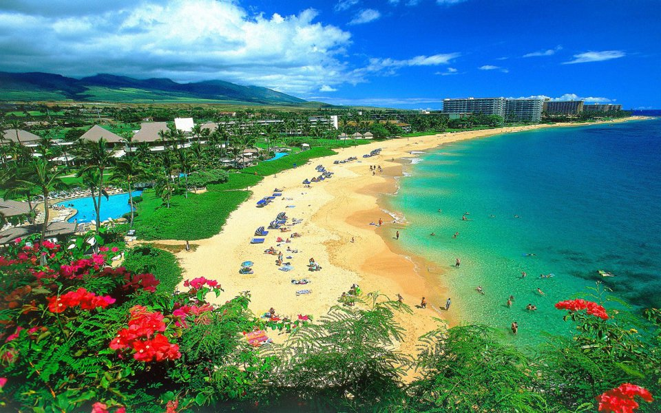 Maui Real Estate Picture content