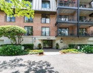 680 Green Bay Road Unit 203, Winnetka image