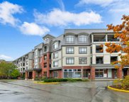 8880 202 Street Unit 419, Langley image