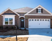 22899 Downing Park Cir, Mccalla image