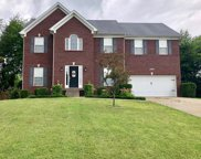 2216 Morgan RIdge Ct, La Grange image