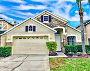 1607 Eagle Feather Drive, Kissimmee image