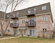 131 East Winchester Road Unit B, Libertyville image