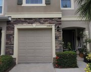 10408 Butterfly Wing Court, Riverview image