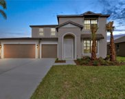 11119 Spring Point Circle, Riverview image