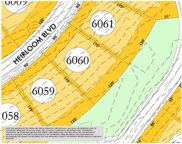 8416 Heirloom Blvd (Lot 6060), College Grove image