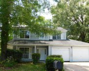 2423 Castlereagh Road, Charleston image