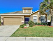 3711 Crystal Dew Street, Plant City image