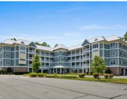 33586 Windswept Blvd Unit 6306, Millsboro image