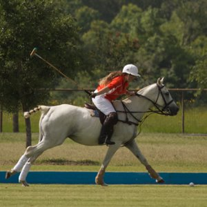 Megan playing polo 2014