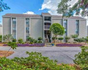 62 South Cove Pl. Unit 3A, Pawleys Island image